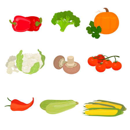 Vector illustration with a symbol of pepper, pumpkin, mushrooms, pepper, corn, zucchini and others
