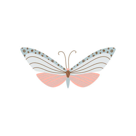 Beautiful, multi-colored butterfly with an unusual shape of the wings and patterns on them. Vector illustration isolated on white background.