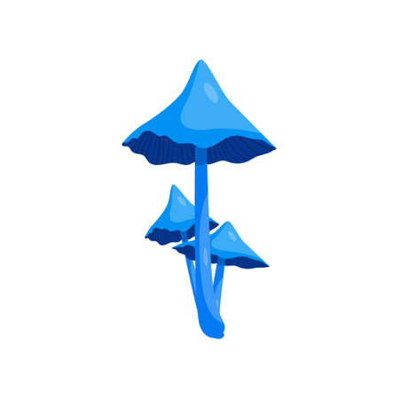 Beautiful fresh mushroom of unusual shape. Colored mushroom for cooking mushroom soup and other dishes. Ilustracje wektorowe