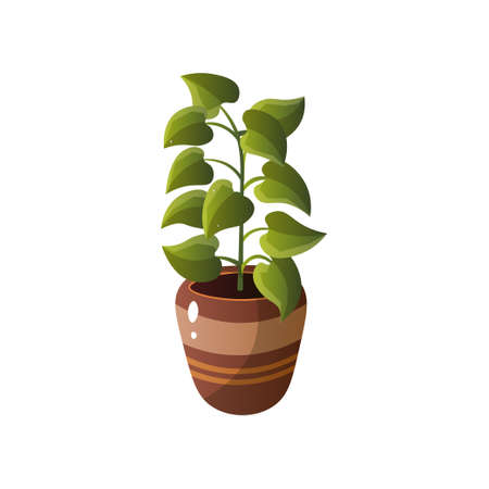 Homemade cute home plant in a beautiful colorful pot. Vector illustration isolated on white background. Vektorové ilustrace