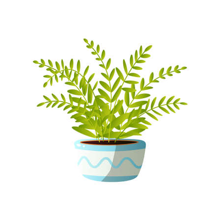 Homemade cute home plant in a beautiful colorful pot. Vector illustration isolated on white background.