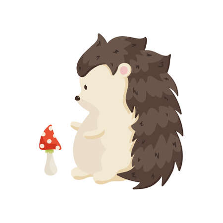 Small pot-bellied hedgehog stands on its hind legs and looks at the mushroom. Side view close up isolated on white background. Children cartoon gathering mushrooms theme
