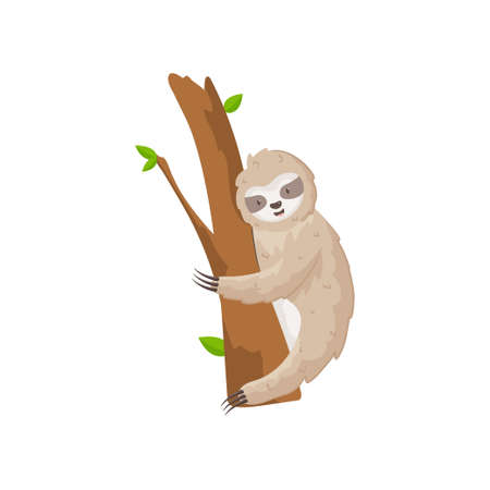 Cute sloth climbs the tree tightly holding paws with claws. Funny card with animal cub on wood isolated on white background