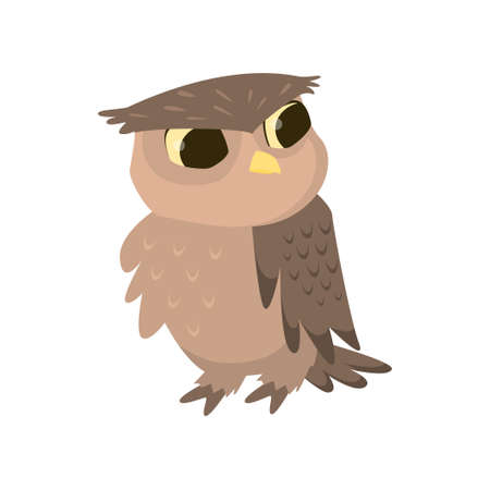 Wild bird cartoon. Wise owl standing and looking serious with menacing glance. Wild forest feathered nocturnal predatory bird of prey. Ornithology thematic, teaching card. Wildlife fauna symbol.