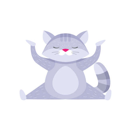 Plump fluffy raccoon doing cross split and meditating. Cartoon isolated on white background. Meditation concept.