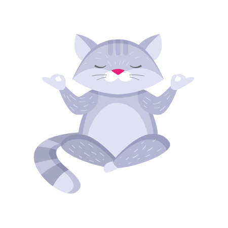 Plump fluffy raccoon sitting in lotus pose and meditating. Gray animal restoring breathing in zen. Cartoon isolated on white background. Meditation concept. Illustration