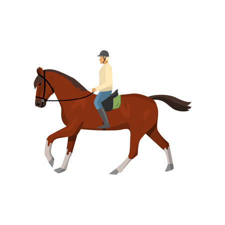 Man riding dark brown jogging horse isolated against white background