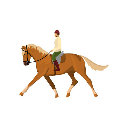 Man riding brown jogging horse isolated against white background Ilustração