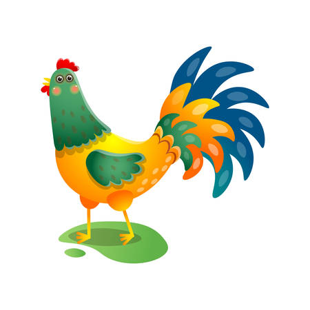 Crowing rooster with beautiful tail on the field with green grass over white