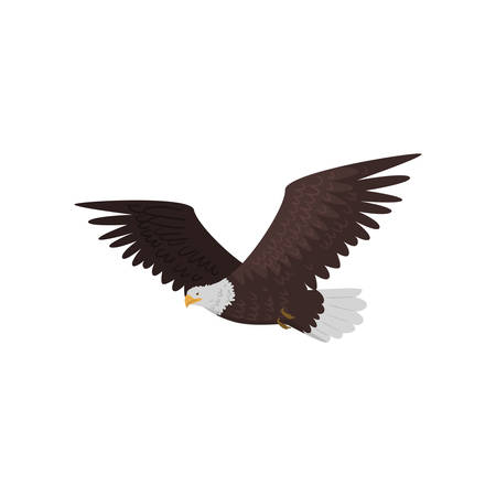 Flying bald eagle with large wings isolated on white background. Realistic cartoon bird character. Wildlife of north america concept Ilustrace