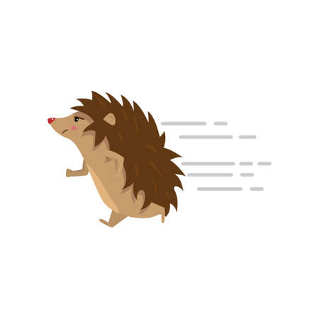 Funny cute hedgehog running fast isolated on white background