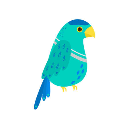 Tropical cute kea parrot, colorful species of exotic bird family. Flat style. Vector illustration on white background Illustration