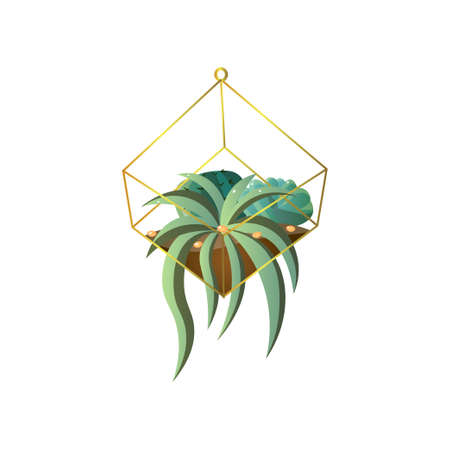 Green colorful succulent plant with long leaf in home terrarium pot. Cartoon style. Vector illustration on white background