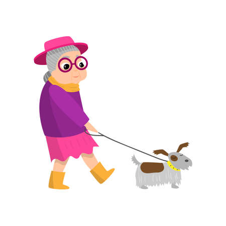 Cute senior woman with pink hat walking with dog in city park. Flat style. Vector illustration on white background