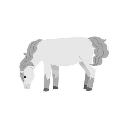 White horse from village farm eat green grass