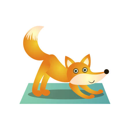 Cute colorful fox training yoga pose at soft mat at sport day. Cartoon style. Vector illustration on white background