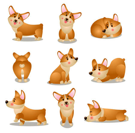 Set of corgi dog character in different daily situations 일러스트