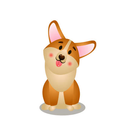 Cute open mouth corgi dog stay on home place