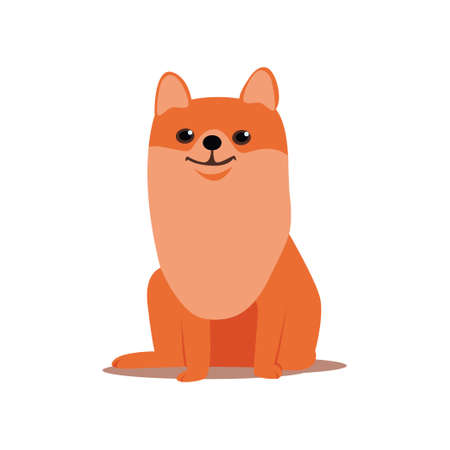 Cute red spitz dog shiny eyes stay at the place Illustration