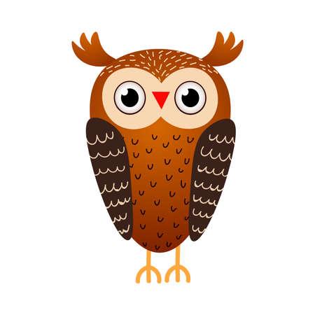 Cute brown owl bird, wild from autumn forest Çizim
