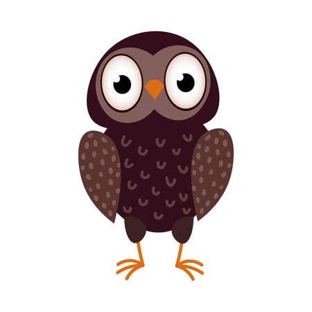 Cute brown color kid owl bird stay on floor