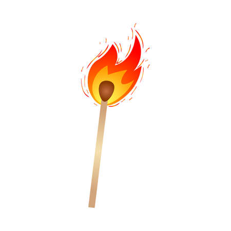 Hot burning fire wood match, for camping, hiking use