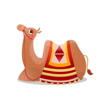 Camel sitting with a saddle. Raster illustration in flat cartoon style on white background.