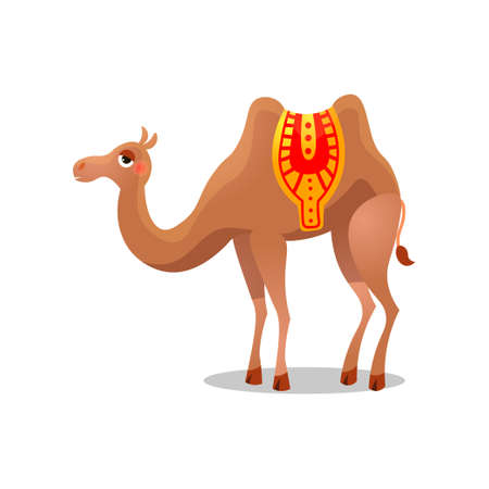 Bactrian camel with a saddle. Raster illustration in flat cartoon style on white background.