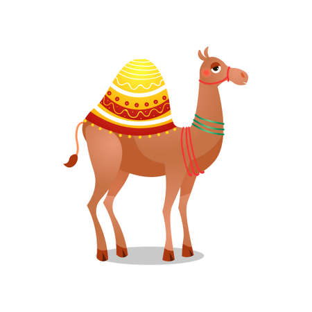 Dromedary camel with a saddle. Raster illustration in flat cartoon style on white background.  イラスト・ベクター素材