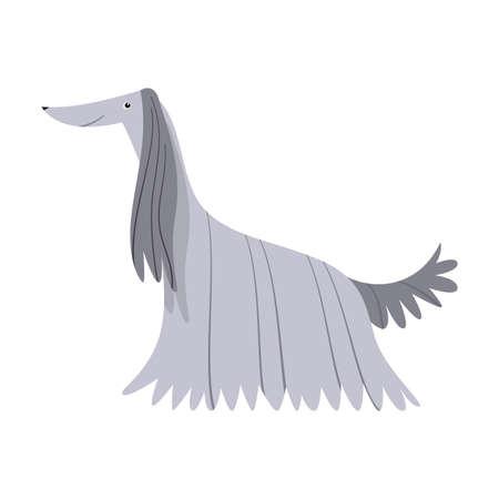 Afghanischer Windhund. Rasterillustration im flachen Cartoon-Stil