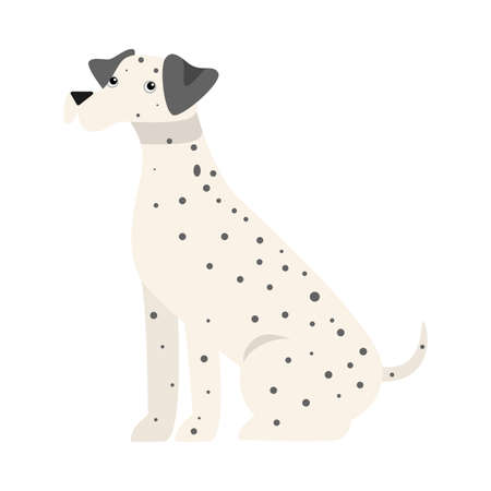 Cute dalmatian dog. Raster illustration in flat cartoon style
