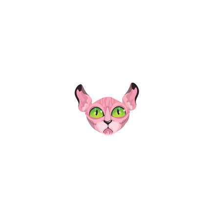 Hairless pink cats face with green eyes Illustration