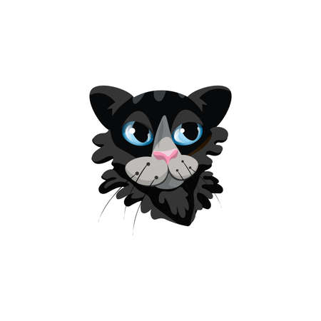 Black fluffy cats face with blue eyes vector illustration