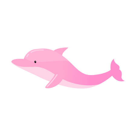 Pink dolphin jumping. Vector illustration isolated on white background
