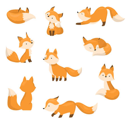 A set of cute cartoon foxes in different actions. Vector illustration in flat cartoon style. Иллюстрация
