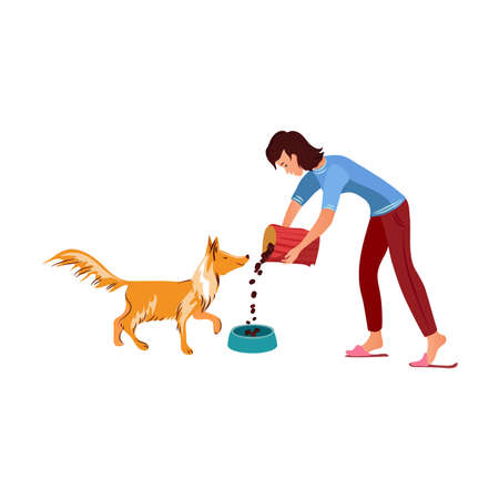 Girl feeding her red collie dog vector illustration