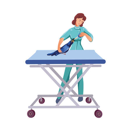 Veterinarian gives a medicine to a parrot on a table in a veterinary clinic. Vector colorful illustration in cartoon style. Illustration