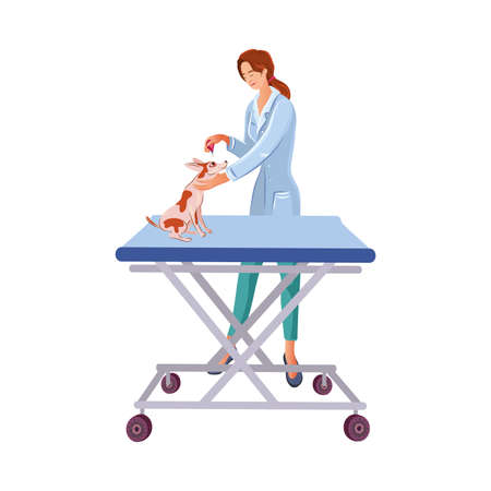 Veterinarian dripping eyes of a dog on a table in a veterinary clinic. Vector colorful illustration in cartoon style. Illustration