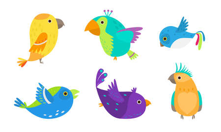 Set of small colorful tropical birds and parrots vector illustration