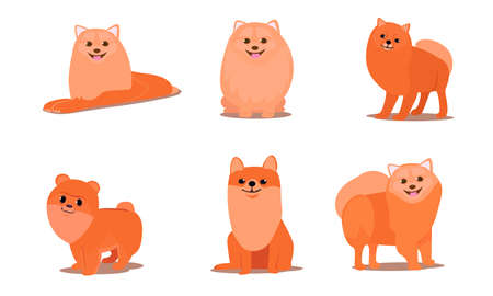 Set of isolated hand drawn cute funny friendly brown fluffy spitz dogs in different poses doing everyday things over white background vector illustration. Happy children books illustrations concept