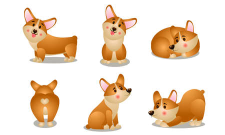 Set of isolated hand drawn cute funny friendly brown corgi dogs in different poses doing everyday things over white background vector illustration. Happy children books illustrations concept