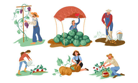Set of different farmer people collecting natural eco food from the garden. Isolated icons set illustration on a white background in cartoon style.