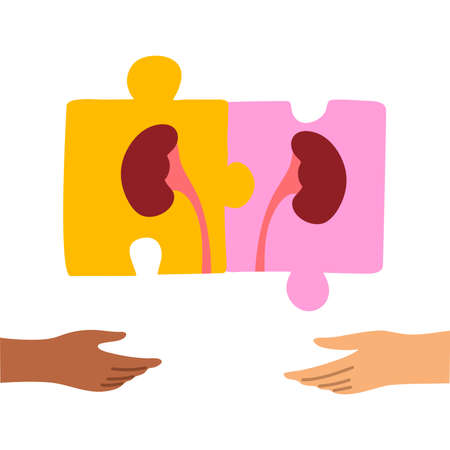 Kidney donation symbol illustration in form of puzzle pieces with two hands. World Kidney Day. Isolated vector icon illustration on white background in cartoon style.