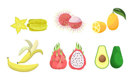 Collection set of various sliced tropical exotic fruits. Carambola, rambutan, lemon, banana, pitaya, avocado. Isolated icons set illustration on a white background in cartoon style.