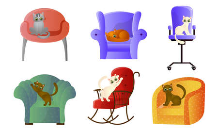 Colorful domestic cats relaxing and sharpen claws on armchairs and coaches Stock Illustratie