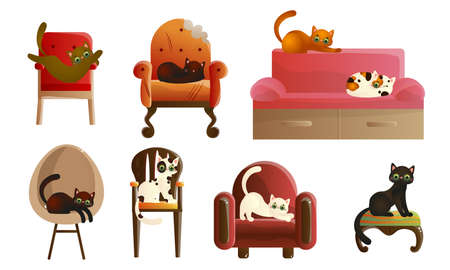 Set of domestic cats relaxing on armchairs and coaches Foto de archivo - 150556806