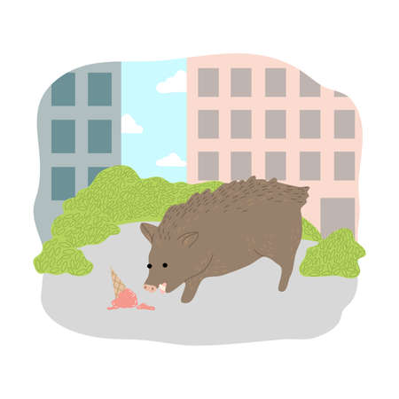 Grey pig eating ice cream from ground in city 向量圖像