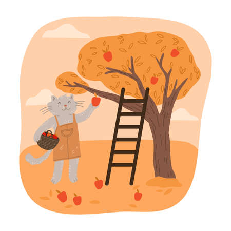 Grey cat farmer picking fresh red apples to basket during harvesting  イラスト・ベクター素材