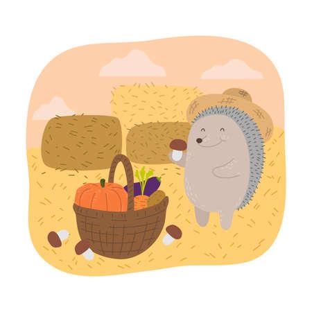 Grey hedgehog farmer picking ripe vegetables to basket during harvesting