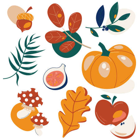Set of traditional autumn ripe fruits, vegetables and fallen leaves